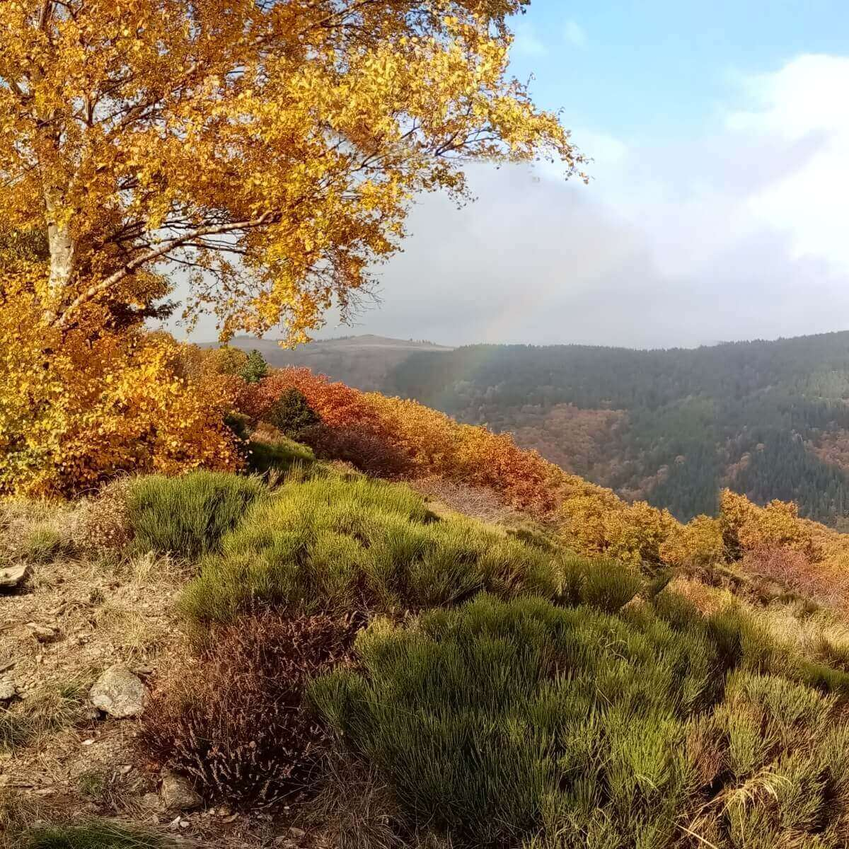 Weather in the Cevennes fall